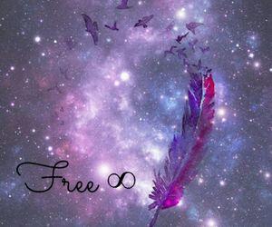 free, galaxy, and bird image