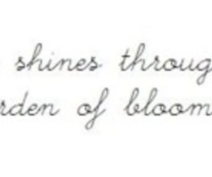 cursive, quote, and text image