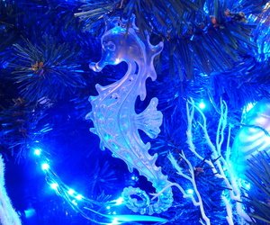 blue, christmas, and horse image