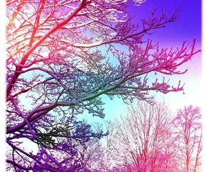 tree, snow, and colors image
