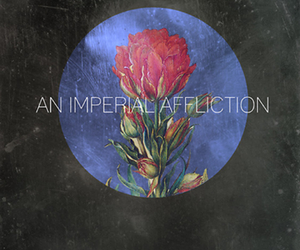 an imperial affliction, john green, and tfios image