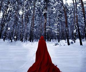 forest, red, and snow image