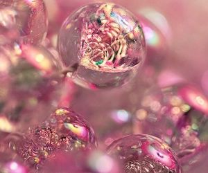 pink and bubbles image