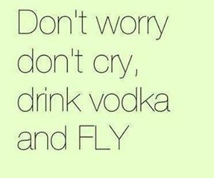 vodka, drink, and fly image