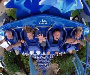 fun, Roller Coaster, and summer image