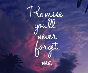 forget, promise, and love image