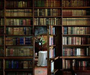 book, library, and secret image
