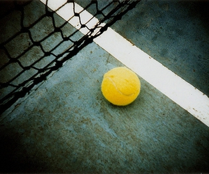 ball, court, and net image