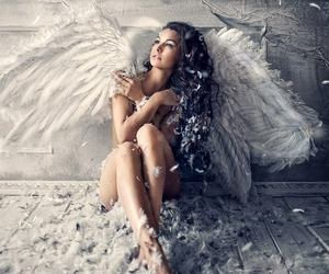 angel, feathers, and heaven image