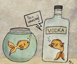 absolut, goldfish, and hangover image