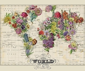 flowers, fragonard, and map image