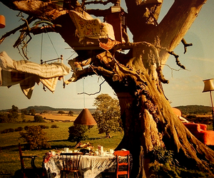bed and tree image