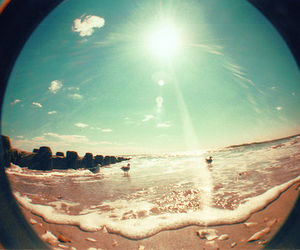 beach, fish eye, and hipster image