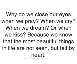 beautiful, Dream, and heart image