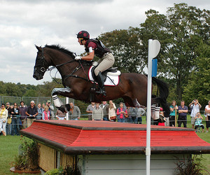 2007, horse, and eventing image
