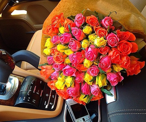 roses, cute, and love image