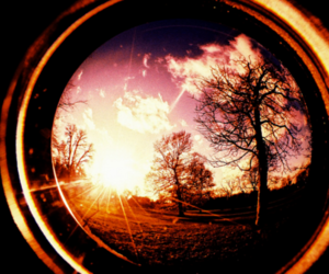 camera, sunset, and trees image