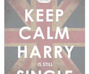 keep calm, single, and harry image