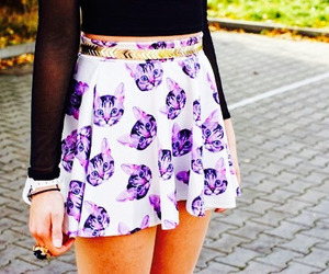 cats, fashion, and pinterest image