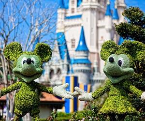 disney, photography, and mickey mouse image