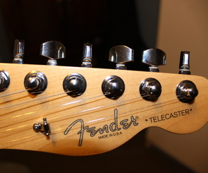 canon, fender, and guitar image