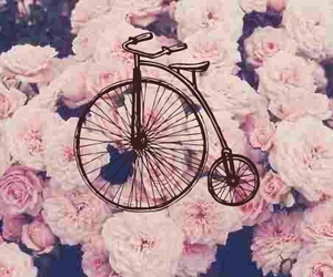 bicycle, floral, and pink image