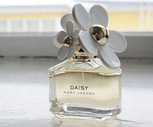 cherie, daisy, and dior image