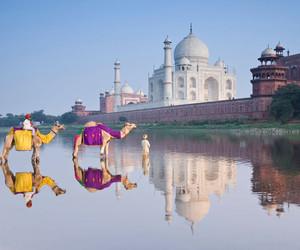 taj mahal, ❤, and الهند image