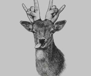 deer, animal, and drawing image