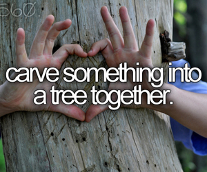 tree, love, and bucket list image