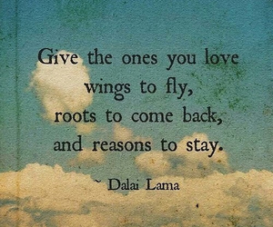 love, quotes, and wings image