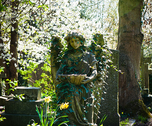 cemetery, highgate, and statue image