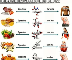 food, health, and fitness image