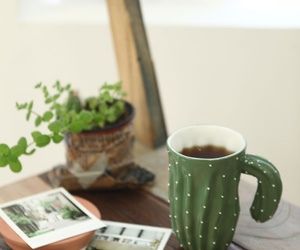 cactus, plants, and coffee image