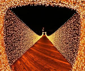 light, christmas, and bridge image