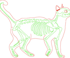 cat, drawing, and green image