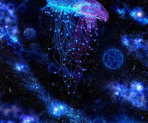 blue and jellyfish image
