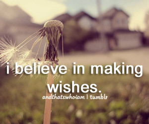 wish and wishes image
