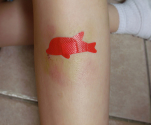 dolphin, pale, and red image