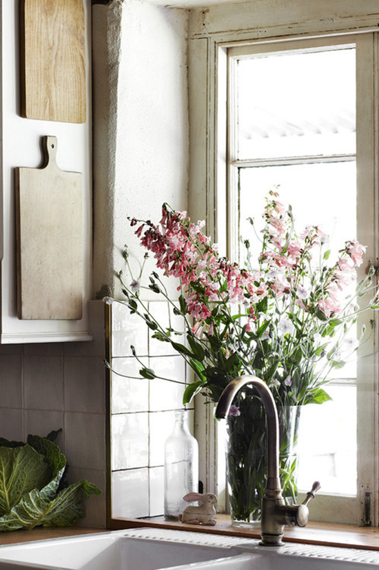 flower, pink, and kitchen image