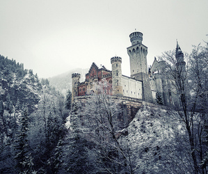 castle, germany, and nature image