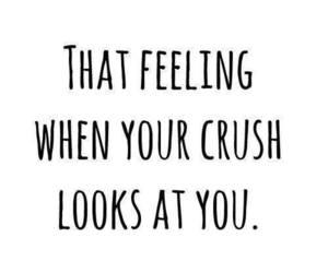 crush, love, and feeling image