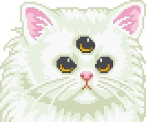 cat, grunge, and pixel image
