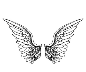 wings, angel, and transparent image
