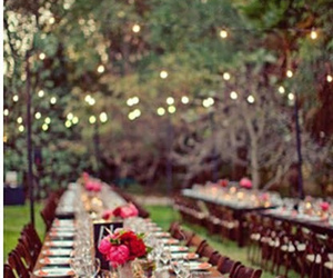 wedding, lights, and flowers image
