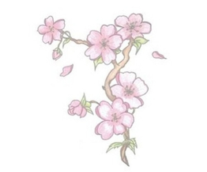 blossom, cherry, and pastel image