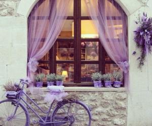 purple, bicycle, and bike image