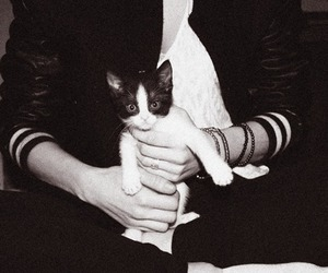 black and white, kitty, and girl image