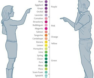 colors, woman, and funny image