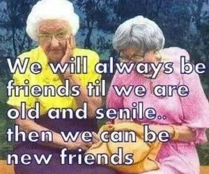 friends, old, and quote image